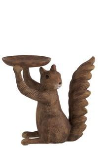 Eekhoorn schaal