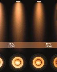 XIRAX - Plafondspot - LED Dim to warm - GU10 - 2x5W 2200K/3000K - Zwart