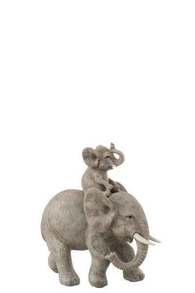 Olifant met kind op Rug