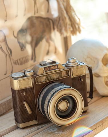 Camera Antiek Metaal Bruin